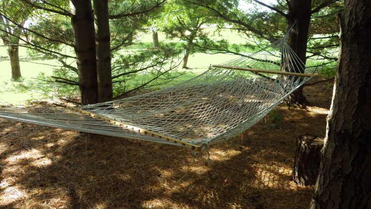 cotton fiber hammock